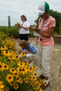 teachers participating in wildflower observation activity