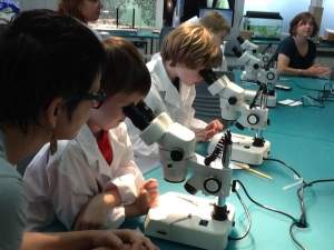 The next generation of scientists.