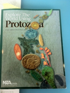 Photo of the book cover for Protozoa, by the NSTA Press