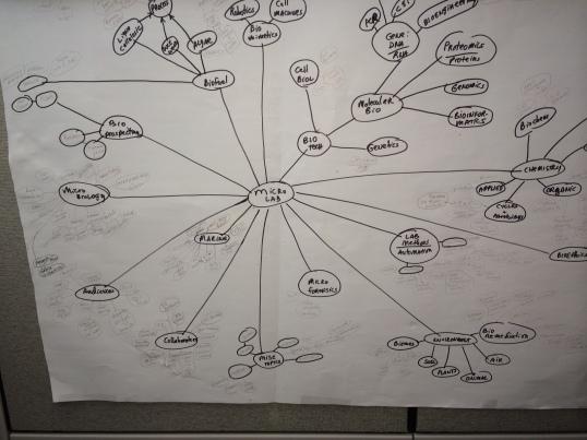 Basic lab topic plan