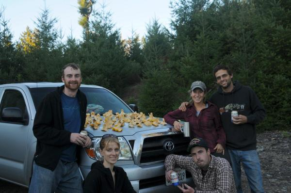 Chanterelle collecting in Northern California