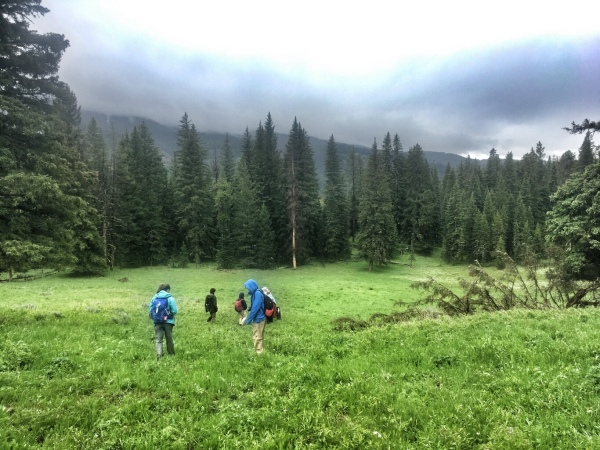 Hiking through meadows with Dan Hartman